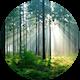 20151020095329 fortrollande skog large2.jpg?crop=faces&fit=facearea&h=80&w=80&mask=ellipse&facepad=3